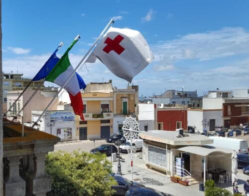 Consegna bandiera CRI 2